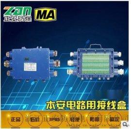 电路本安接线盒 JHH-10(A) 防水电源接线盒
