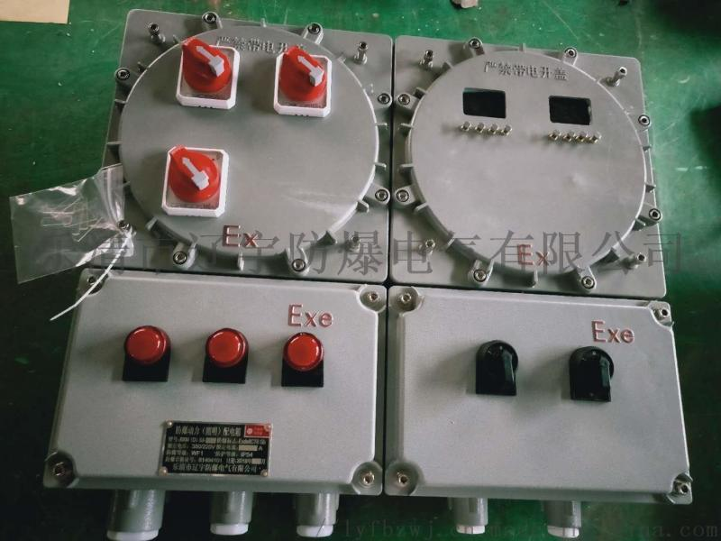 IIC防爆仪表箱 防爆电伴热箱 防爆温控箱