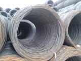 建筑工地用线材 唐钢HPB300 可加工直条