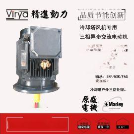 冷却塔立式电机Y2DT160L4/6 12/4kW