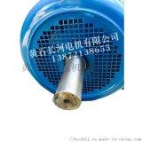 起重冶金電機 YZR355L1-10/110KW