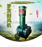 養殖增氧羅茨風機 啓正三葉羅茨風機 羅茨真空泵