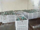 商用全套香酥黃花魚   炭燒魷魚罐頭生產設備廠家
