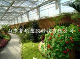棗莊雙層pc陽光板  陽光板批價格 廠家專業定製