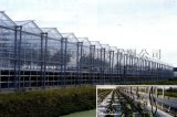 玻璃溫室 玻璃溫室廠家 山東溫室公司