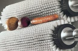 蔬菜清洁机zm999型毛刷辊