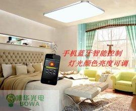 创意创新 手机蓝牙智能遥控灯吸顶灯 客厅卧室灯 可调光亮度LED灯带小夜灯