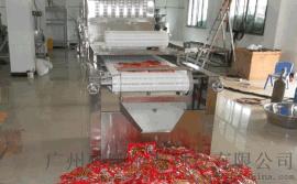 广州志雅ZY-20HM微波杀菌设备_微波杀菌机生产厂家