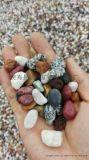 河北石家莊天然彩色石子生產廠家 天然彩色石子