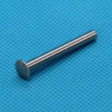 厂家直销 供应不锈钢多种扁圆头半空心铆钉