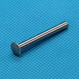 廠家直銷 供應不鏽鋼多種扁圓頭半空心鉚釘
