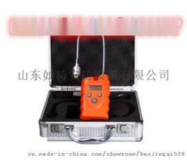 RBBJ-T便携式可燃气  测仪可燃气体泄漏报 仪