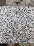 福建G655芝麻白光面幕墙干挂石材芝麻灰光面