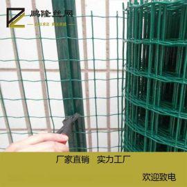 鹏隆 养殖荷兰网 养殖铁丝网 养殖防护网