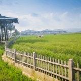 庭院仿木柵欄製作 水泥柵欄 廣東仿木欄杆綠色環保