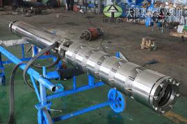 橡胶轴瓦不锈钢潜水泵\德国里茨技术生产白钢潜水泵