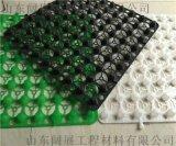 臨沂塑料蓄排水板生產商/歡迎光臨闊展廠家