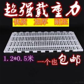 板产床漏粪板塑料漏粪板加厚塑料漏粪板小猪漏粪板