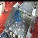節能新型號素鍋包肉上漿機 素鍋包肉上漿油炸配套設備