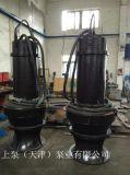 天津潜水式快速排污泵
