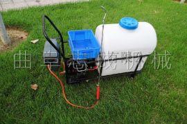 供应推车式电动打药机105L大容量手推式喷雾器