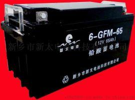 新太电池6-FM-65固定型免维护阀控式密封铅酸蓄电池
