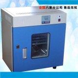 特价供应 电热恒温鼓风干燥箱恒温箱 老化试验箱