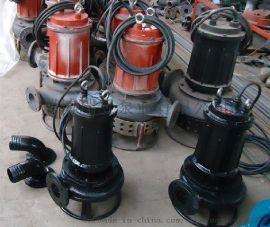污水厂沉淀池排污泵 污水泵  污浊液泵