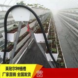 草莓立体种植架 瓜果蔬菜无土栽培槽支架