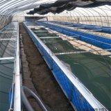 尺寸定做PVC涂塑布水池可折叠防水帆布水池泳池养殖帆布鱼池锦鲤池种植蓄水池