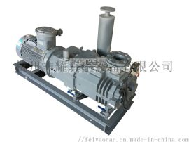 浙江工厂干式无油无水螺杆式真空泵