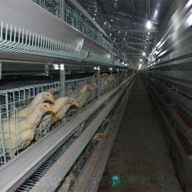 厂家  鸡子养殖笼子 中州牧业订做 镀锌鸡笼