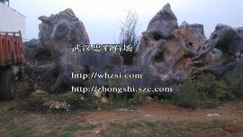 湖北园林石武汉报价-武汉上吸水石 灵壁石品种样式