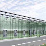 智慧溫室大棚建設 智慧溫室大棚工程