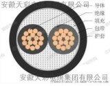 天彩阻燃控制软电缆ZR-KVVR