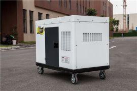 大泽动力 30千瓦永磁柴油发电机