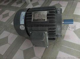 广东东莞销售东元马达,AEEF卧式感应马达,三相异步电机