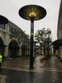 专业生产LED景观灯 庭院灯 高杆灯 太阳能路灯