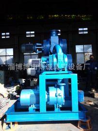 博诚ZJP罗茨水环式真空泵真空机组 厂家直销 品质保证