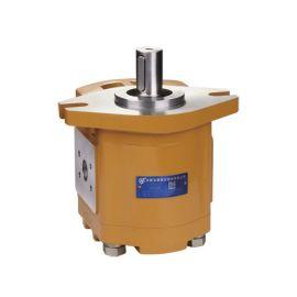 CBF-F6长源齿轮泵 齿轮油泵 齿轮泵上海 液压齿轮泵 长源液压 合肥长源液压