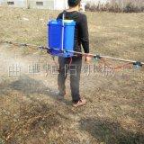 厂家直销旭阳支架式喷雾器背负式打药喷雾器