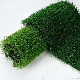河北沧州人造草坪厂家、塑胶跑道、足球场草坪