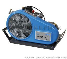 BAUER250-TE德国宝华移动型呼吸器充气机