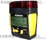 RS232端口R美国英思科MX2100多种气体检测仪