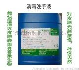 贻顺 Q/YS. 951 消毒洗手液 高效除菌洗手液