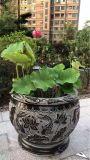 石雕魚缸-花盆-石燈裝飾-匠珂石業