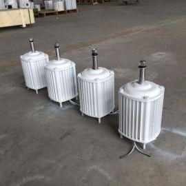 专业供应500瓦小型发电机微型发电机