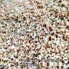 水处理鹅卵石 污水净化鹅卵石 过滤池承托层滤材