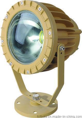 湖北武汉BAD808系列LED防爆路灯