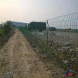 生產廠家專業定製 果園圍欄網 農場護欄網 種植農田隔離網 林場防護網